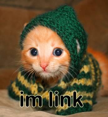I'm Link =^_^=